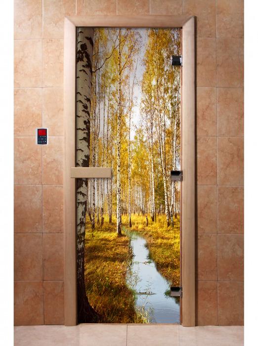 Дверь с фотопечатью, А082