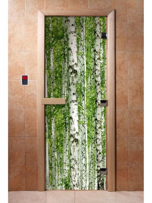 Дверь с фотопечатью, А084